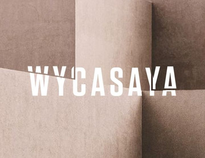Party with WYCASAYA
